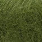 olive 097